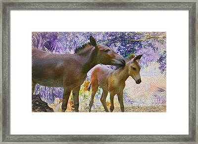 The Kiss Edition 2 Framed Print by Judy Kay