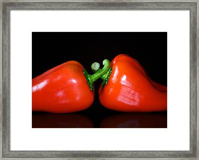 the Kiss Framed Print by Lisa Knechtel