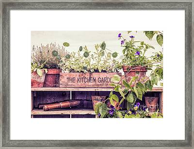 The Kitchen Garden Framed Print