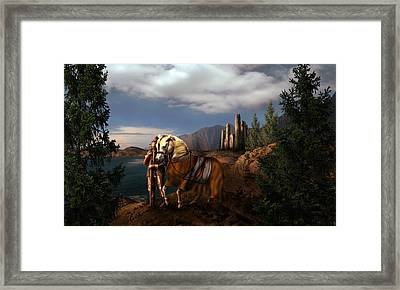 The Knight Of The Kingdom Framed Print