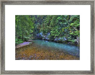 The Kupa River Framed Print by Don Wolf