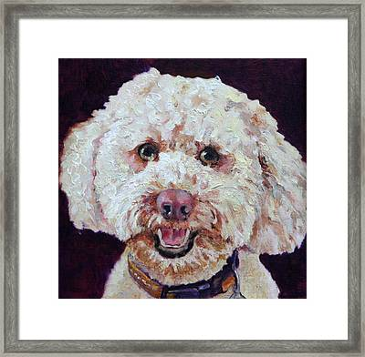 The Labradoodle Framed Print by Enzie Shahmiri