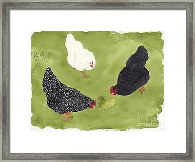 The Ladies Love Salad Three Hens With Lettuce Framed Print