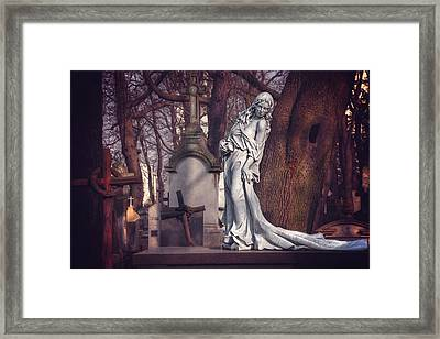 The Lady Of Powazki Framed Print
