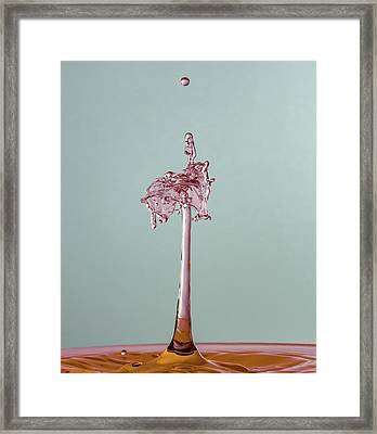 Framed Print featuring the photograph The Lady On The Water Drop by Francisco Gomez