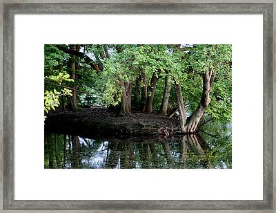 The Lake Framed Print