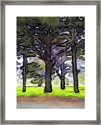 The Landscape With The Trees In A Row Framed Print