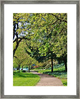 The Lane At Waverly Pond Framed Print by VLee Watson