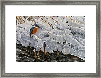 The Last Burst Of Winter Framed Print