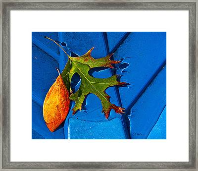The Last Dance Framed Print by Christopher Holmes