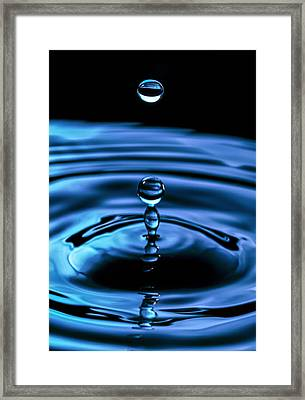 The Last Drop Framed Print by Marlo Horne