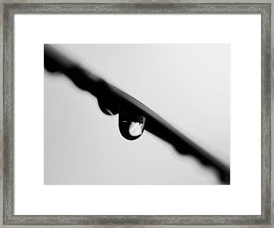 The Last Drop Framed Print by Russell Styles
