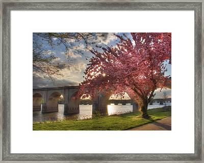 The Last Glimmer Framed Print by Lori Deiter