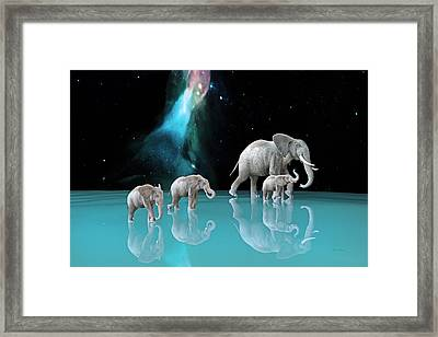 The Last Mother Framed Print by Betsy Knapp