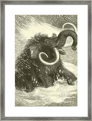 The Last Of The Mammoths Framed Print