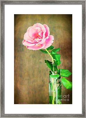 The Last One Rose Framed Print by Roberta Byram