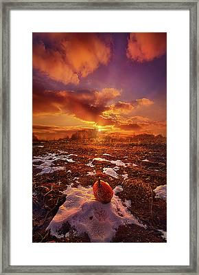 Framed Print featuring the photograph The Last Pumpkin by Phil Koch