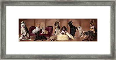 The Last Pupper Framed Print