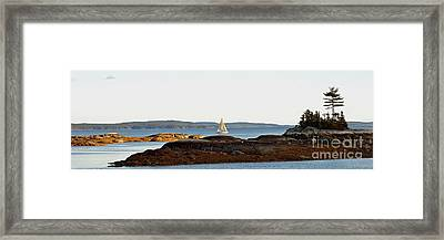 The Last Sail Framed Print by Christopher Mace