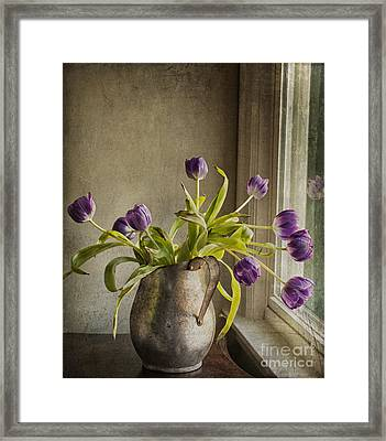Framed Print featuring the mixed media The Last Tulips by Terry Rowe