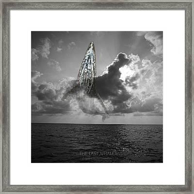 The Last Whale Framed Print by Andy Frasheski