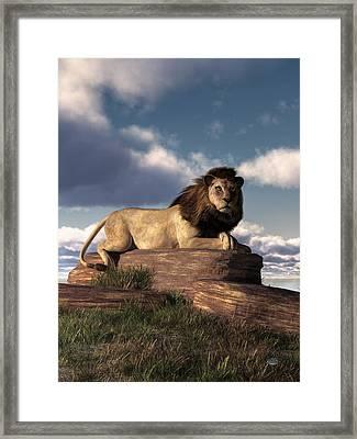 The Lazy Lion Framed Print