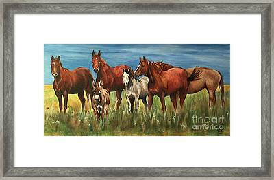 The Leader Of The Pack Framed Print by Patty Vicknair