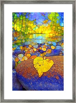 The Leaf At The Creek Framed Print by Tara Turner
