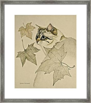 Framed Print featuring the drawing the Leaf Cat by Tim Ernst