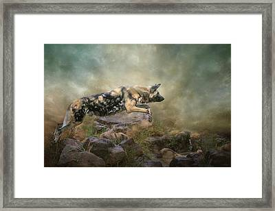 The Leap Framed Print