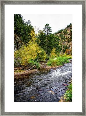 The Leaves Of Fall Framed Print by Jon Burch Photography