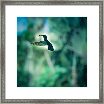 The Levitation Framed Print