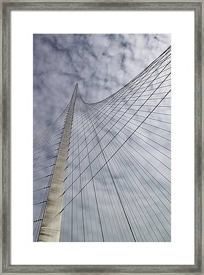 The Liberty Pole Framed Print