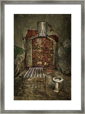 The Life Of Crime Framed Print by Evelina Kremsdorf