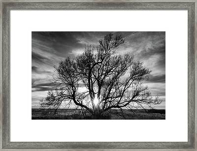 Framed Print featuring the photograph The Light Comes Through by Monte Stevens