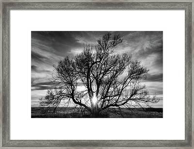 The Light Comes Through Framed Print