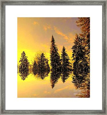 Framed Print featuring the photograph The Light by Elfriede Fulda