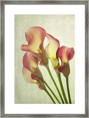 The Light Within Framed Print by Rebecca Cozart