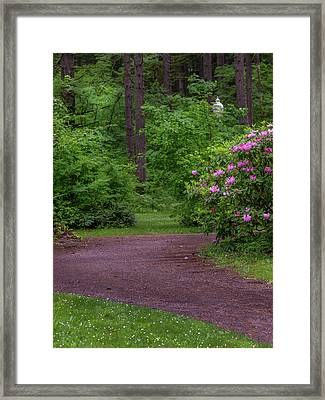 The Lighted Path Framed Print by Michele James