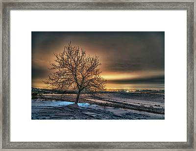 The Lights Of The Rose Valley Framed Print