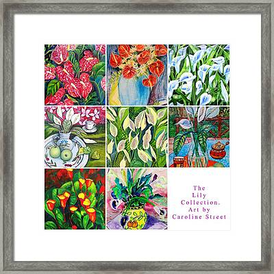 The Lily Collection Framed Print