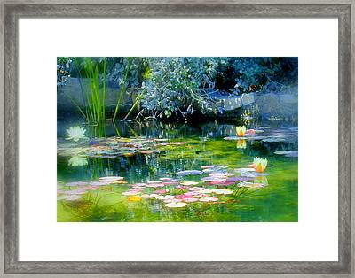 The Lily Pond I Framed Print by Lynn Andrews