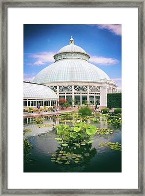 The Lily Pool Framed Print by Jessica Jenney