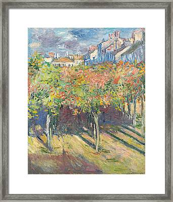 The Lime Trees At Poissy Framed Print by Claude Monet