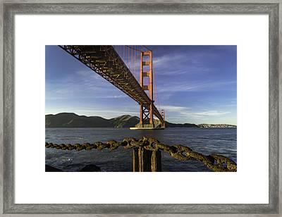 The Link Framed Print by Ian Riddler