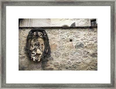 The Lion Of Salzburg Framed Print