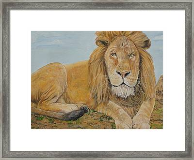 The Lion Framed Print by Rajesh Chopra
