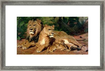 The Lions At Home Framed Print by Rosa Bonheur