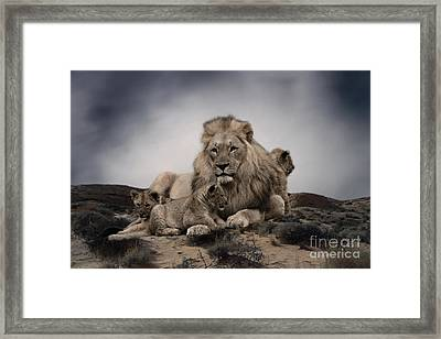 Framed Print featuring the photograph The Lions by Christine Sponchia