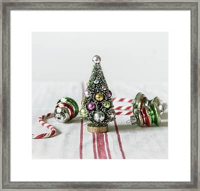 The Little Christmas Tree Framed Print